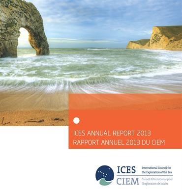 ICES Annual Report 2013 front cover beach